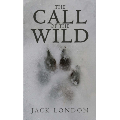 5 Best Jack London Books Of All Time Ranked List 2020 Bookkooks